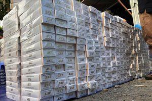 Bắt tạm giam thêm 2 đối tượng trong vụ vận chuyển 48.500 bao thuốc lá lậu