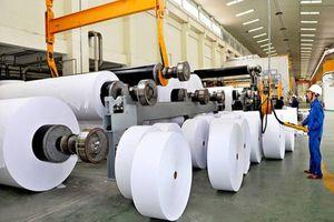 Ngành công nghiệp giấy và bột giấy Việt Nam: Tăng trưởng, tiềm năng nhưng còn nhiều bất cập