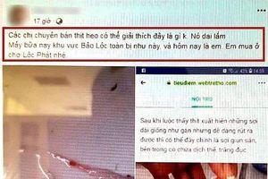 Bị phạt 10 triệu đồng vì đăng Facebook sai sự thật về việc 'heo nhiễm sán'
