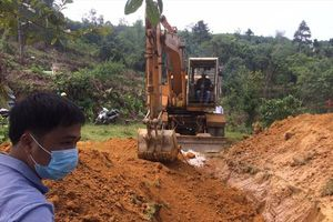 Quảng Nam buộc phải tiêu hủy hơn 150 con lợn bị lở mồm long móng