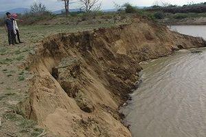 Đắk Lắk: Bị thu hồi giấy phép, HTX lập công ty xin khai thác cát tiếp