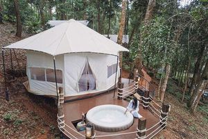 Trải nghiệm 'ngủ lều tắm hồ' cực 'chanh sả' giữa rừng cây tại Chiang Mai
