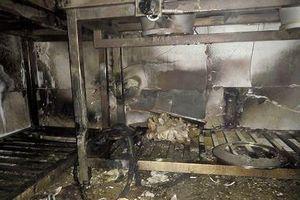 Kiểm tra khách sạn Helen ở Hạ Long sau hỏa hoạn