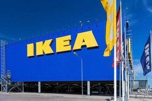 Ông lớn nội thất IKEA muốn rót 450 triệu USD vào VN