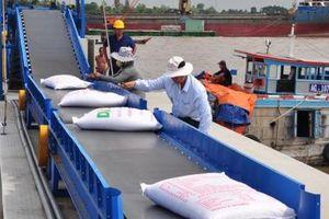 Sụt giảm mạnh gạo xuất khẩu sang Trung Quốc