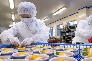 Tập đoàn FLC của tỷ phú Trịnh Văn Quyết muốn lấn sân sang lĩnh vực suất ăn hàng không