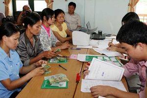 Hướng dẫn kế toán áp dụng cho tổ chức tài chính vi mô