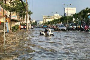 Dùng nước biển 'cứu' ĐBSCL thoát ngập