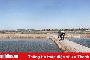 Phát triển HTX nuôi trồng thủy sản