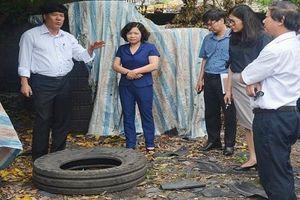 Hà Nội: Rà soát, tăng cường phòng chống dịch sốt xuất huyết