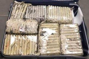 Hải quan Đà Nẵng thu giữ hơn 3.000 điếu xì gà vận chuyển qua đường hàng không