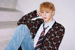 LM Entertainment tiếp tục tố cáo luật sư bóp méo sự thật để nghiêng về phía Kang Daniel