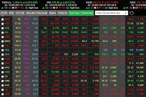 Mua cổ phiếu quĩ không cứu nổi cuộc khủng hoảng giá của YEG