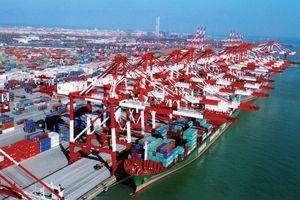 Hãng vận tải biển Đài Loan vừa mua 20% cổ phần Cảng Đà Nẵng