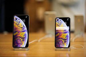 iPhone liên tục giảm giá tại Việt Nam, chuyện gì đang xảy ra?