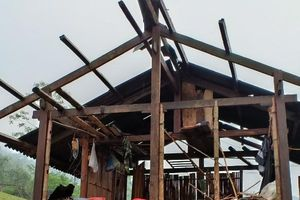 Mưa lốc ở các tỉnh phía bắc gây nhiều thiệt hại về tài sản