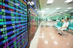 Vì sao doanh nghiệp Việt chưa mặn mà với kiểm toán nội bộ?