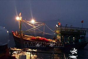 Cứu thành công tàu cá cùng 16 thuyền viên bị nạn trên biển
