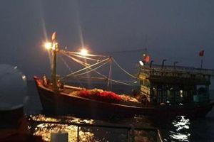 Cứu nạn tàu cá cùng 16 thuyền viên gặp nạn trên Vịnh Bắc Bộ