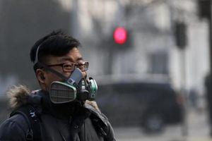 Hàn Quốc, Trung Quốc hợp tác về năng lượng thân thiện với môi trường