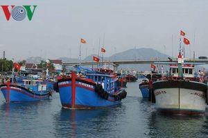 Thả tôm cá giống tái tạo nguồn lợi hải sản trên biển Đông
