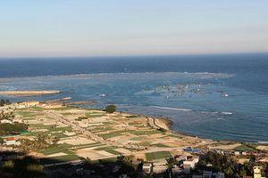 Đề nghị quy hoạch Lý Sơn thành khu du lịch quốc gia