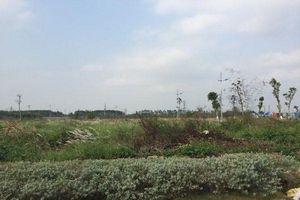 Gần 2.000 ha đất dự án tại Mê Linh bị bỏ hoang: Doanh nghiệp 'sốt ruột'