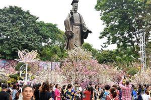Hấp dẫn Lễ hội hoa anh đào Nhật Bản - Hà Nội 2019