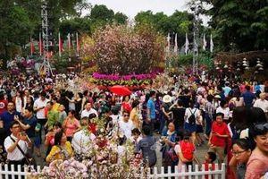 Lễ hội hoa anh đào Nhật Bản – Hà Nội 2019 kéo dài thêm 1 ngày phục vụ du khách