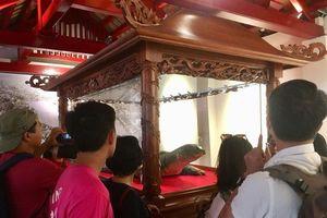 Tiêu bản cụ rùa Hồ Gươm cuối cùng thu hút người dân Thủ đô