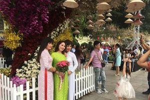 Không cần đến Nhật Bản, hàng ngàn người vẫn có ảnh xinh lung linh giữa Hà Nội bên hoa anh đào rực rỡ khoe sắc