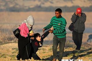 Hamas: Thỏa thuận ngừng bắn sẽ được ký kết trong vài ngày tới