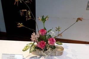 Tọa đàm về nghệ thuật cắm hoa Nhật bản - Ikebana