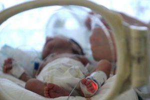 Em bé được sinh ra từ người mẹ đã chết não 3 tháng
