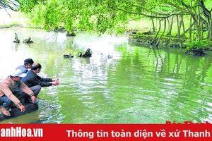 Còn một suối 'cá thần' ở miền Tây xứ Thanh