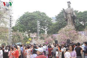 Có gì ở Lễ hội hoa anh đào Nhật Bản mà thu hút du khách đến thế?