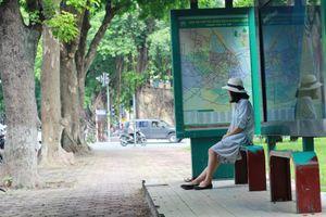 Hà Nội qua góc nhìn của riêng tôi và xe bus