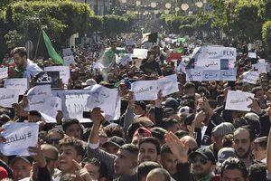 Algeria đang tìm cách ngăn chặn quan chức tham nhũng đào thoát