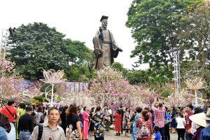 Lễ hội hoa anh đào kéo dài đến ngày 2-4 vì thời tiết thuận lợi