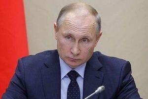 Tổng thống Putin kê khai bao nhiêu thu nhập cá nhân 2018?