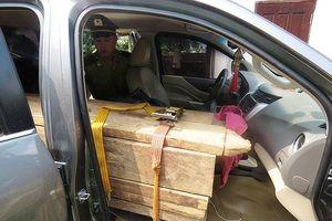 Quảng Bình: Bắt giữ ô tô gắn biển số giả chở gỗ lậu
