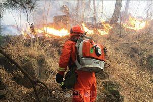 30 người thiệt mạng trong vụ cháy rừng tại Tứ Xuyên, Trung Quốc