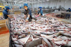 Giải pháp bảo vệ và phát triển nguồn lợi thủy sản