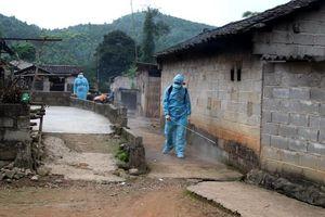 Lạng Sơn: Thêm một huyện công bố dịch tả lợn Châu Phi