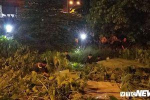 Kẻ nghi cướp tiệm vàng bị bắt sau gần 10 tiếng núp dưới kênh ở TP.HCM