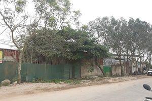 Quảng Xương (Thanh Hóa): Xưởng tái chế nhựa ngang nhiên tồn tại trái phép trên đất nông nghiệp và đất ở