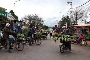 Họp 'chợ chuối' trên QL9: Chủ tịch tỉnh chỉ đạo xây chợ mới