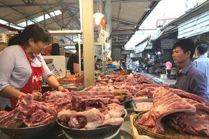 Hà Nội: Giá thịt lợn hơi tăng trở lại