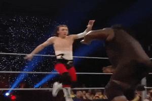 Người thường có đủ sức đánh bại các đấu sĩ WWE không?