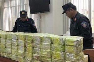 Công ty buôn ma túy đội lốt chỉ hoạt động cầm chừng mà không ai biết